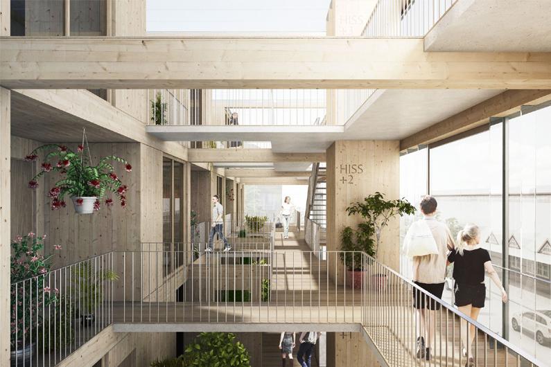 Promoción de viviendas colaborativas (Cohousing).
